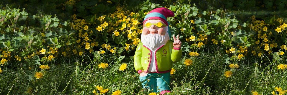 5 Easy Gardening Tips To Increase The Value of Your Property This May